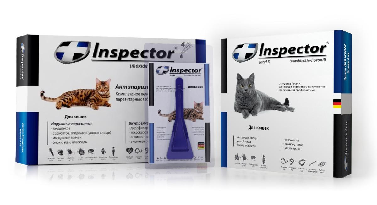 Milyen sűrűn kell féregteleníteni a kutyát és a macskát? - HáziPatika