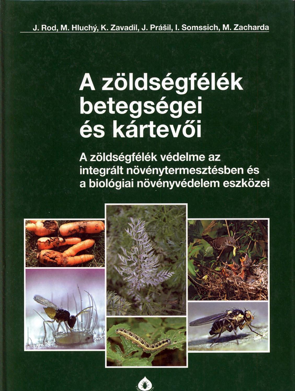 gyógynövény a férgekből származó rókagombával szemben