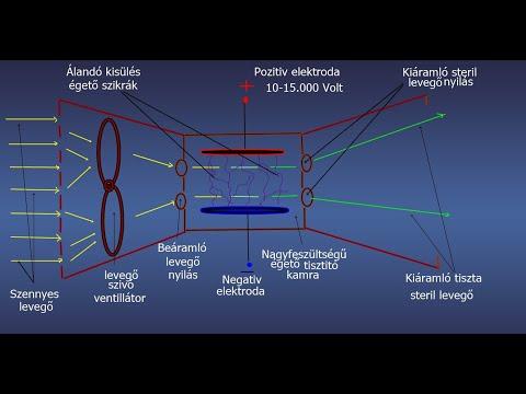 A helminthiasis kutatóintézetei, Helminthiasis és Parasitology Kutatóintézet, Férgek a diszkoszban