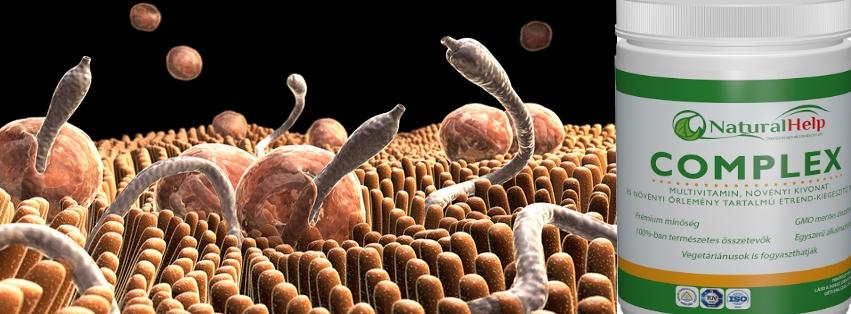 parazita megelőző gyógyszer
