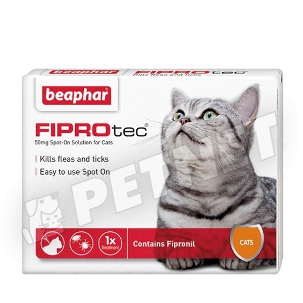 macska bolha elleni szer