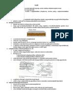 exoparaziták példái Arc paraziták gyógyszere