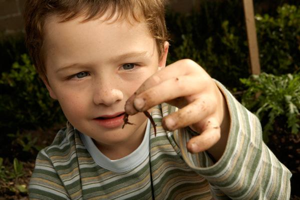 hogyan jönnek elő férgek pinworm tabletták tőlük