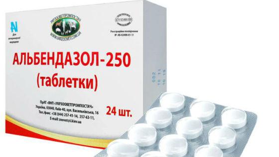 milyen gyógyszerek jobbak a férgekből való ivásra