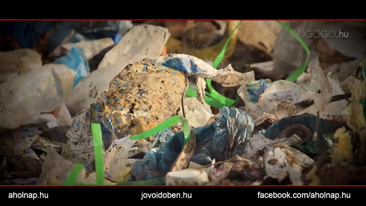 a helmintos szennyeződés forrásai