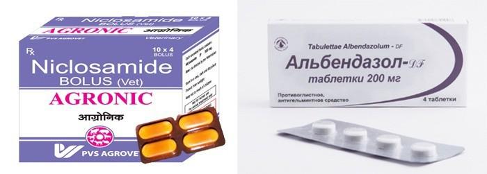 trichinózis prevalencia hormon diéta méregtelenítés kiegészítők